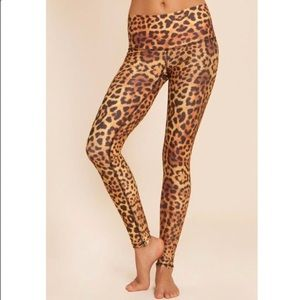 Teeki Cheetah Triangle Hot Pant